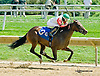 Shot Gun Molly winning at Delaware Park on 9/3/14