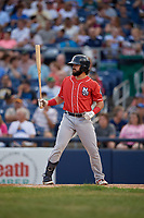 New Hampshire Fisher Cats Brock Lundquist (32) bats during an Eastern League game against the Trenton Thunder on August 20, 2019 at Arm & Hammer Park in Trenton, New Jersey.  New Hampshire defeated Trenton 7-2.  (Mike Janes/Four Seam Images)