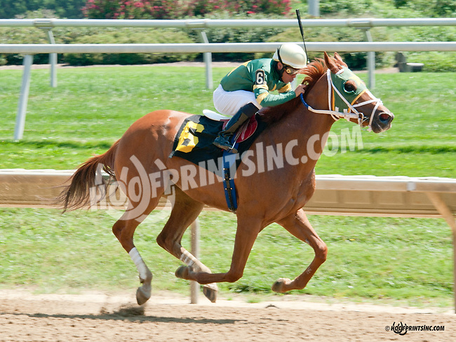 Brother Leo winning at Delaware Park on 8/25/14