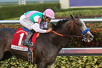 HALLANDALE BEACH, FL - JANUARY 28:  #1 Arrogate with jockey Mike Smith on board wins the Pegasus World Cup Invitational G1at Gulfstream Park on January 28, 2017 in Hallandale Beach, Florida. (Photo by Liz Lamont/Eclipse Sportswire/Getty Images)