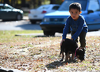 NWA Democrat-Gazette/J.T.WAMPLER Luis Leal, 3, urges his sister's puppy, Princess, to stay away from the parking lot at Veterans Park in Fayetteville Monday Nov. 4, 2019. Luis was at the park with his mom, Elizabeth Leal of Fayetteville.