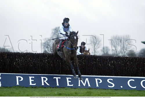 TONY McCOY leads on NEEDWOOD LION. The Network Group Handicap Steeple Chase. Pertemps Christmas Festival Meeting, Kempton Park 021226. Photo:Neil Tingle/Action Plus...2002.horse racing.national hunt fences