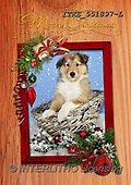 Isabella, CHRISTMAS ANIMALS, WEIHNACHTEN TIERE, NAVIDAD ANIMALES, realistic animals, realistische Tiere, animales re, paintings+++++,ITKE551897-L,#XA#