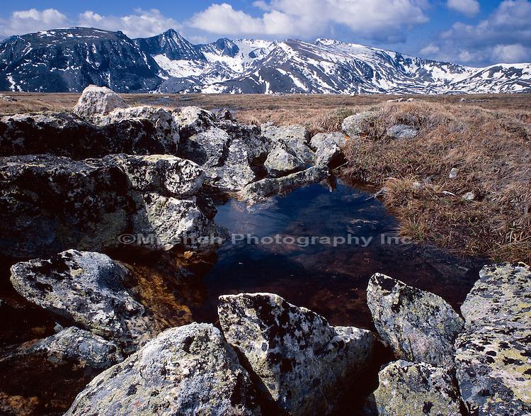 Alpine range Rocky Mountain NP  COLORADO, Front Range;Rocky Mountains