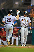 Jupiter Hammerheads Dexter Kjerstad (25) high fives Avery Romero (13) after hitting a home run during a game against the Palm Beach Cardinals on August 12, 2016 at Roger Dean Stadium in Jupiter, Florida.  Jupiter defeated Palm Beach 9-0.  (Mike Janes/Four Seam Images)