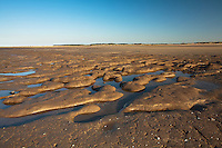 Late afternoon sun over the beach at low tide, Titchwell, Norfolk, Uk
