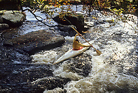 Europe/France/Limousin/87/Haute Vienne: Kayak sur la vallée de  la Vienne aux environs de Nedde