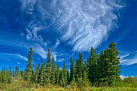 CLouds and boreal forest<br />