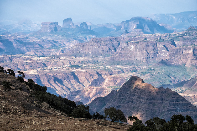 The Simien range consists of several major plateaux divided by large river valleys. At their feet are the remains of ancient hills, now eroded into hundreds of pinnacles and buttresses.