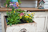 63821-201.11 Potting bench with flowers in spring, Marion Co. IL