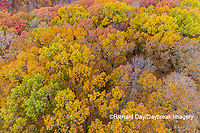 63876-02311 Aerial view of fall color trees Stephen A. Forbes State Park Marion Co. IL