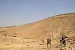 Israel, Negev, Nahal Kinah at the foothill of Hurvat Uza