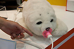 """July 11th, 2012 : Tokyo, Japan - The robotic seal Palo is a therapy robot, which can react user's actions like pettings and greetings. More than 200 of companies exhibit to show their newly innovative products during Micromachine/MEMS ROBOTECH 2012 at the Tokyo Big Sight in Tokyo, Japan. This year's keyword for this exhibition is """"Open Innovation"""". (Photo by Yumeto Yamazaki/AFLO)"""