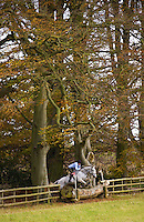 Young man jumps Grey mare on cross-country course in the Cotswolds, Swinbrook, Oxfordshire, UK