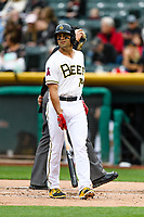 Ryan LaMarre (14) of the Salt Lake Bees at bat against the Sacramento River Cats in Pacific Coast League action at Smith's Ballpark on April 11, 2017 in Salt Lake City, Utah. The River Cats defeated the Bees 8-7. (Stephen Smith/Four Seam Images)