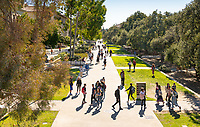 View of the Occidental College campus from a lift on Jan. 23, 2019, including the JSC and Academic quads, JSC and Johnson Hall.<br /> (Photo by Marc Campos, Occidental College Photographer)