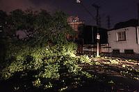 ATENCAO EDITOR IMAGEM EMBARGADA PARA VEÍCULOS - SAO PAULO, SP, 24 DEZEMBRO 2012 - Imagem da Arvore de grande porte que caiu na Rua Barao de Monte Santo obstruindo toda via, no bairro do Mooca na regiao leste da capital paulista, na noite desta segunda-feira, 24. (FOTO: VANESSA CARVALHO / BRAZIL PHOTO PRESS).