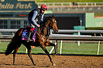 October 30, 2019: Breeders' Cup Juvenile Fillies Turf entrant Unforgetable, trained by Joseph O'Brien, exercises in preparation for the Breeders' Cup World Championships at Santa Anita Park in Arcadia, California on October 30, 2019. Scott Serio/Eclipse Sportswire/Breeders' Cup/CSM