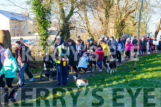 Operation Transformation 5k Walk: Some of the huge crowd that took part in the Operation Transformation 5K walk in Listowel town park on Saturday last.