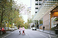 Image Ref: M040<br />