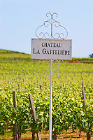 A white sign in the vineyard saying Chateau La Gaffeliere Gaffelière Saint Emilion Bordeaux Gironde Aquitaine France