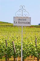 A white sign in the vineyard saying Chateau La Gaffeliere Gaffelière Saint Emilion Bordeaux Gironde Aquitaine France