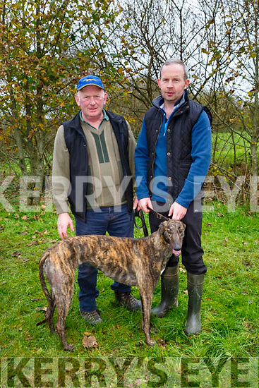 Mark Ryall and Charlie Ryall with Big One at the 58th Island Cup meeting of the Castleisland coursing Club on Monday