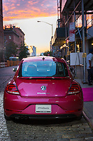 The Pink Agenda Gala sponsored in part by Volkswagen's #PinkBeetle