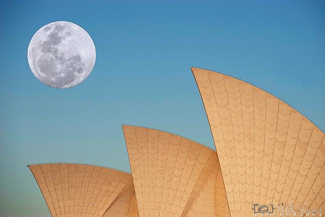 Supermoon rising next to the Sydney Opera House, NSW, Australia