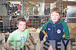 Patrick O'Neill and Timmy Sugerue Ardfert at the kingdom county fair at Ballybeggan park, Tralee on Sunday.
