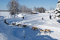 Arriving in 2nd place, Travis Beals crosses under the finish banner of the 2009 Junior Iditarod in Willow, Alaska.   .March 1, 2009