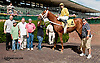 Eyelite winning at Delaware Park on 9/25/13