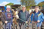 Sean O'Shea Ventry, Jim Cronin Castlegregory and Mossie O'Sullivan Ventry sharing stories at the Milltown Fair on Sunday