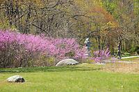 Spring in Gettysburg