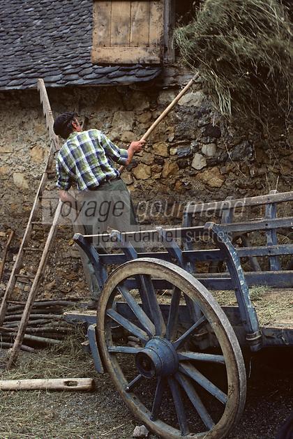 Europe/France/Midi-Pyrénées/09/Ariège/Env Castillon-en-Couserans: Engrangement du foin Ayet<br /> PHOTO D'ARCHIVES // ARCHIVAL IMAGES<br /> FRANCE 1980