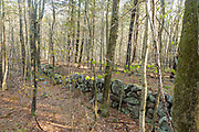 Stone wall from the abandoned 19th century mountain settlement in the forest of Pawtuckaway State Park in Nottingham, New Hampshire.