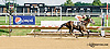 The Third Ace winning at Delaware Park on 7/26/14