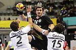 Fernandez, Haab & Carou. GERMANY vs ARGENTINA: 31-27 - Preliminary Round - Group A
