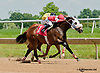 New Yawker winning at Delaware Park on 6/20/13