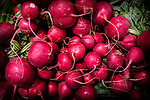 10.9.18 - Red Radishes.....