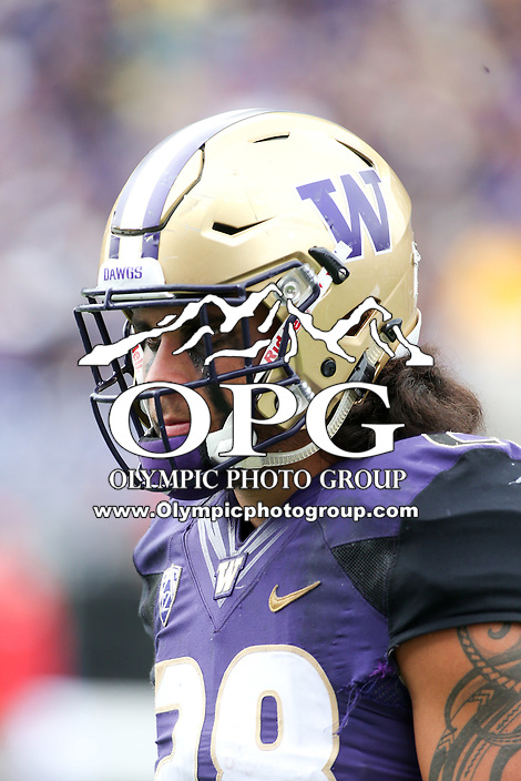 03 September 2016:  Washington's Psalm Wooching against Rutgers.  Washington defeated Rutgers 48-13 at the University of Washington in Seattle, WA.