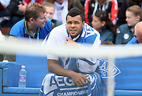 13.06.13 London, England. Jo-Wilfried Tsonga during the The Aegon Championships from the The Queen's Club in West Kensington.