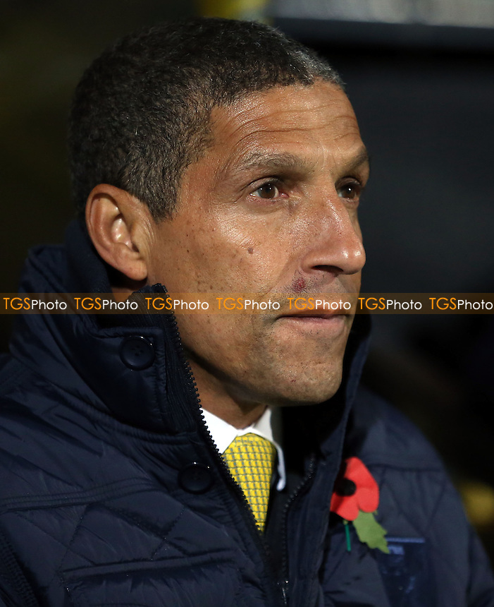 Norwich manager Chris Hughton - Norwich City vs West Ham United, Barclays Premier League at Carrow Road, Norwich - 09/11/13 - MANDATORY CREDIT: Rob Newell/TGSPHOTO - Self billing applies where appropriate - 0845 094 6026 - contact@tgsphoto.co.uk - NO UNPAID USE