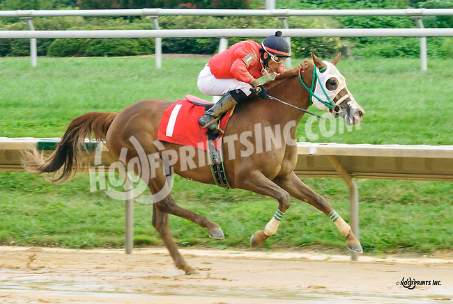 Grandiosa CS winning at Delaware Park on 9/1/16