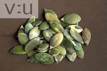 Pumpkin seeds ,Cucurbita maxima,