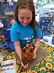 Ansley Griffin, 12, plays with Peppermint Patty, a Thrianta rabbit, at the NV150 Fair at Fuji Park, in Carson City, Nev., on Friday, Aug. 1, 2014.<br /> Photo by Cathleen Allison