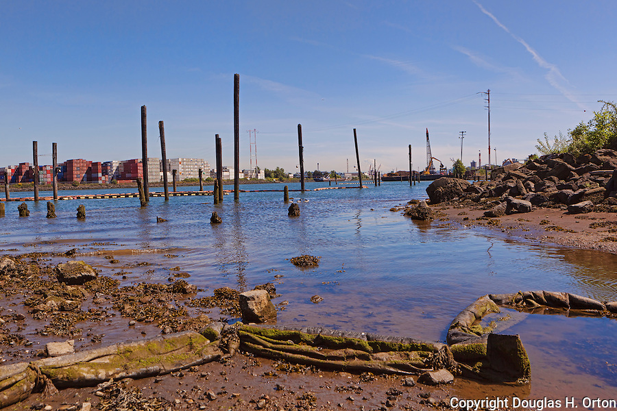 In an area marked as Habitat Restoration, an old oil boom lies in mud along a Duwamish River backwater.  The Duwamish River Superfund Site was designated by the EPA (Environmental Protection Agency) in 2001.  Polution includes  Pcb's,  lead, mercury, arsenic, sewage, and other chemicals.
