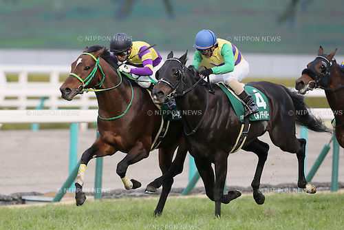 (L-R) Talking Drum (Hideaki Miyuki), Hiruno Devaro (Yoshihiro Furukawa),<br /> FEBRUARY 26, 2017 - Horse Racing :<br /> Talking Drum ridden by Hideaki Miyuki wins the Hankyu Hai at Hanshin Racecourse in Hyogo, Japan. (Photo by Eiichi Yamane/AFLO)