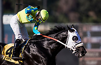 ARCADIA, CA - FEBRUARY 03: Flavien Prat celebrates a win aboard Lombo #4 in the Robert B. Lewis Stakes at Santa Anita Park on February 3, 2018 in Arcadia, California. (Photo by Alex Evers/Eclipse Sportswire/Getty Images)