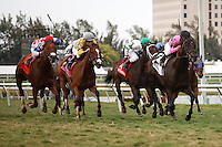 Corporate Jungle with jockey Javier Castellano up leads the stretch drive on his way to winning the Appleton Stakes (G3T). Gulfstream Park Hallandale Beach Florida. 03-31-2012. Arron Haggart / Eclipse Sportswire